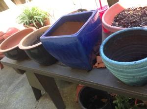 Pretty pots.