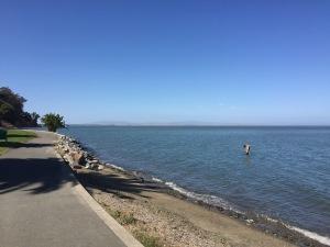 McNears Beach Park - San Rafael